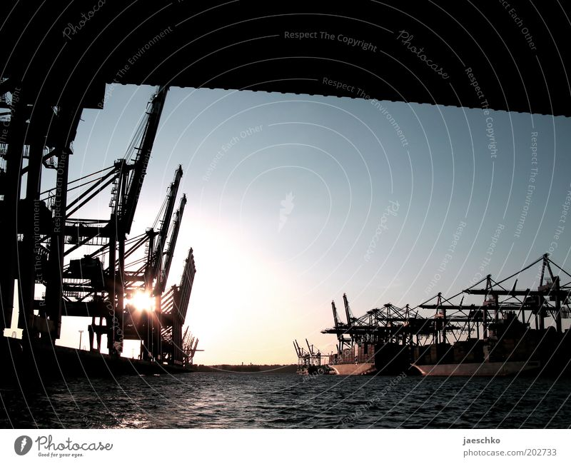 Water Germany Hamburg Industry Bridge Modern Logistics Romance Harbour Economy Jetty Trade Navigation Beautiful weather Crane Load
