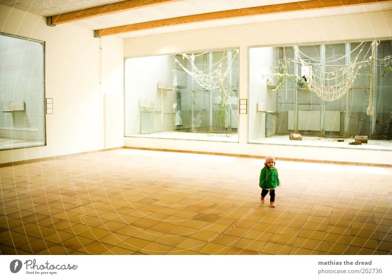 Human being Beautiful Loneliness Infancy Walking Trip Empty Cute Toddler Zoo Hat Tile Monkeys Child Visitor Enclosure