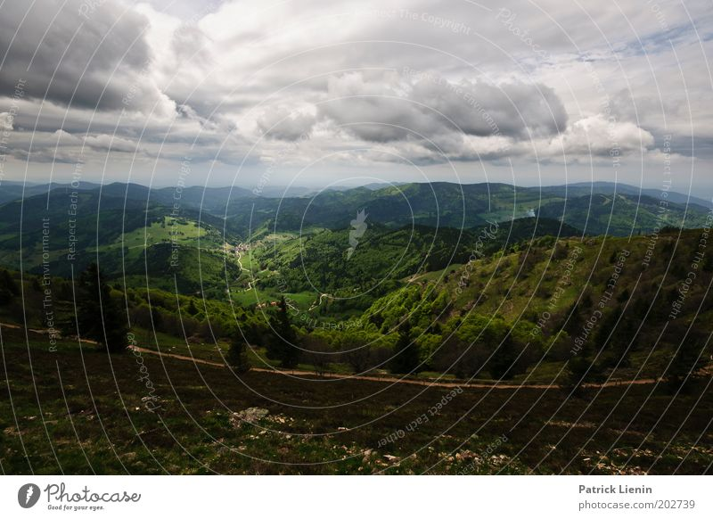 downwards Environment Nature Landscape Mountain Hill Black Forest Tree Vantage point Clouds Dark Rain Tall Green Lanes & trails Far-off places To enjoy Rest