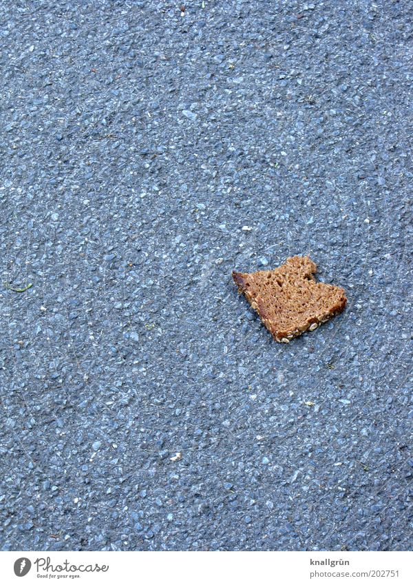 Nutrition Gray Food Brown Lie Asphalt Trash Sidewalk Luxury Society Appetite Bread Slice Lanes & trails Thrifty Lack of inhibition
