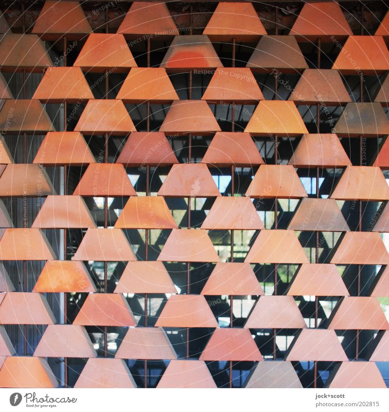 Window Wall (building) Architecture Wall (barrier) Style Stone Facade Orange Modern Glass Perspective Esthetic Retro Protection Many Deep
