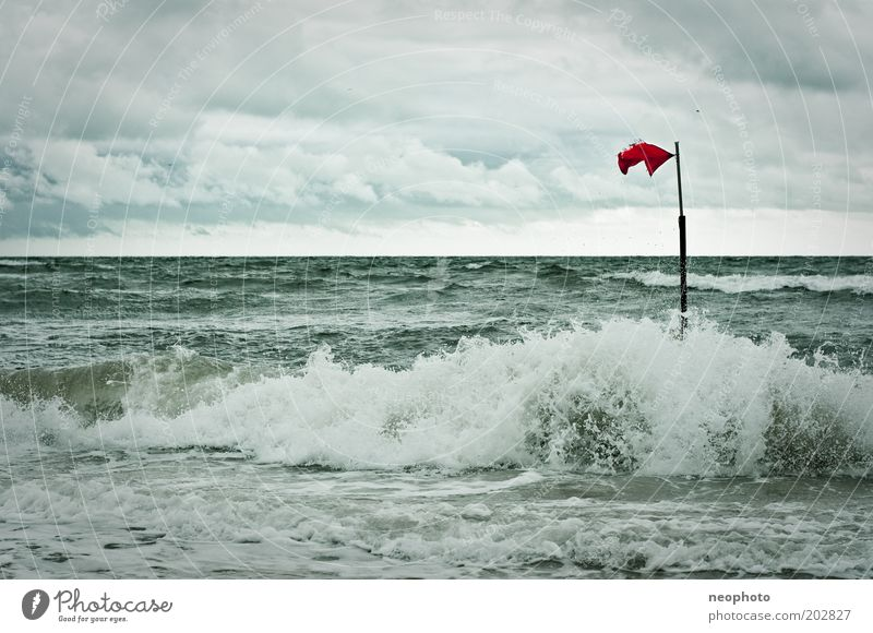 Green Red Beach Loneliness Cold Gray Air Waves Coast Wind Horizon Flag Strong Storm Elements North Sea