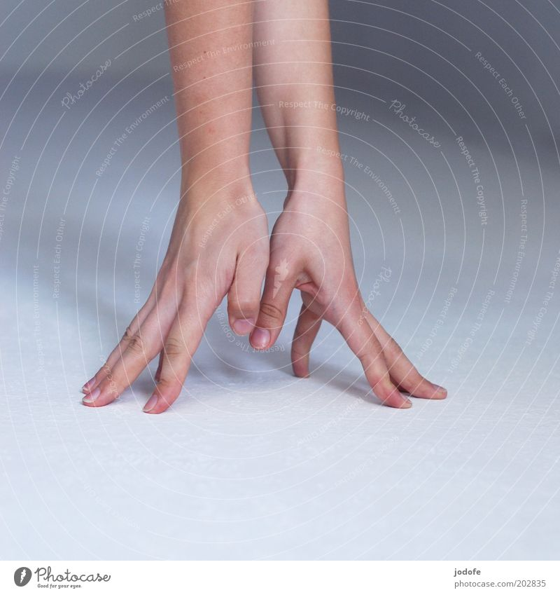 crowfoot Human being Arm Hand 1 Point Fingers Support Stop Skin spread fingers Splay 2 Colour photo Subdued colour Interior shot Detail Copy Space left