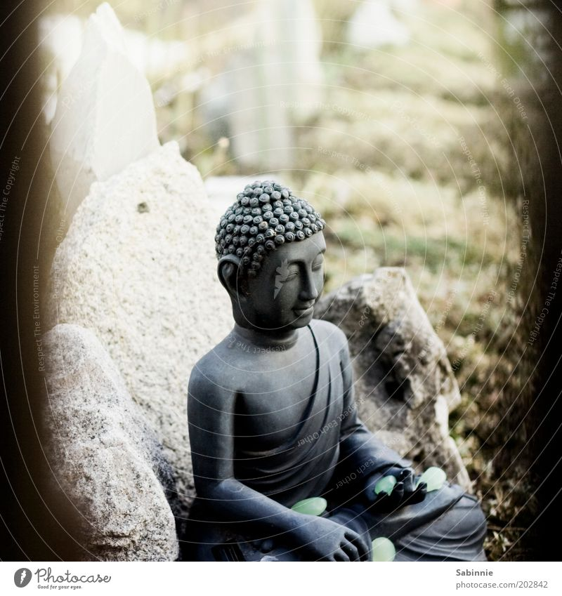 Allotment garden Zen Sculpture Statue of Buddha Garden Stone Sign Touch Relaxation Esthetic Elegant Positive Happy Contentment Religion and faith Meditation