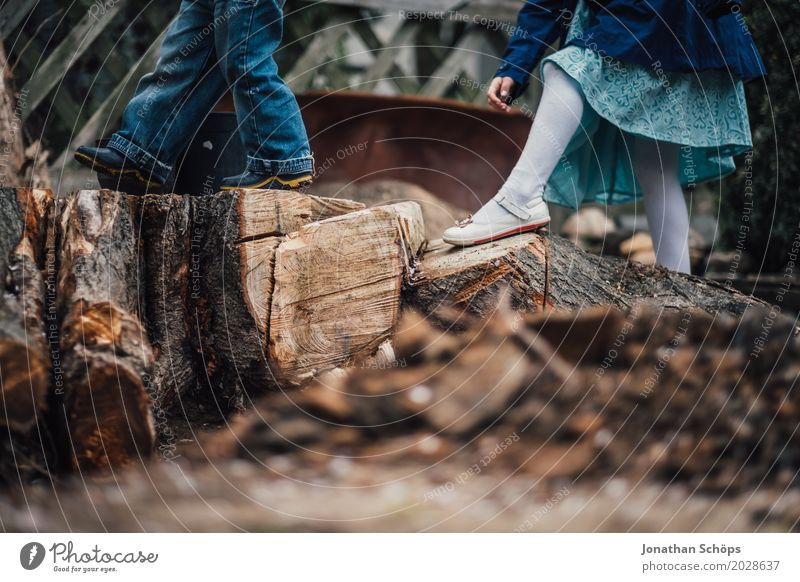 Children playing on logs Playground Playing Adventure Adventurer Exciting Tree trunk Wood Nature Tread Legs Forest Garden Boy (child) Exterior shot Human being