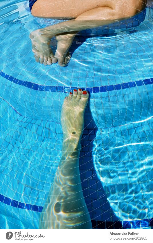 Foot looking for foot to swim together Woman Adults Legs Feet 2 Human being Swimming & Bathing Sit Swimming pool Tile Blue Water Nail polish Red Refrigeration