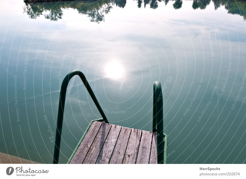 launch pad Summer Sun Pond Lake Blue Green Footbridge wooden planks Water Colour photo Subdued colour Exterior shot Copy Space left Copy Space right Morning