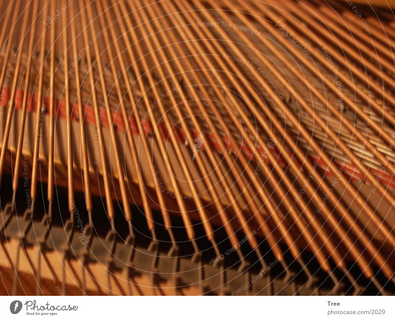 piano strings Piano Musical instrument string Electrical equipment Technology Wing Character
