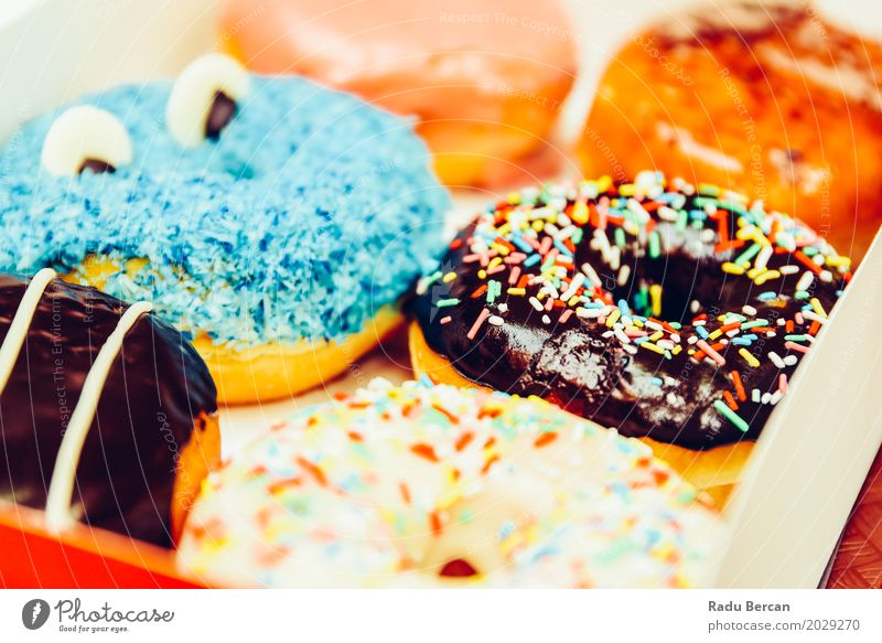 Funny Colorful Donuts In Box Food Dough Baked goods Dessert Candy Nutrition Eating Breakfast Fast food Diet To feed Feeding Fresh Delicious Round Sweet Blue
