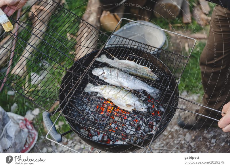 Barbecuing fish is better than barbecuing fishing Lifestyle Healthy Eating Leisure and hobbies Summer Living or residing Flat (apartment) Garden