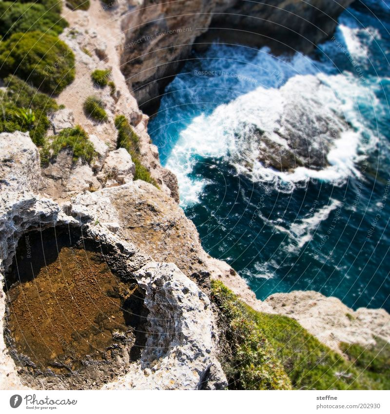 cliff diver Nature Landscape Water Waves Coast Bay Majorca Tall Threat Brave Rock Cliff Colour photo Exterior shot Shallow depth of field Bird's-eye view Ocean