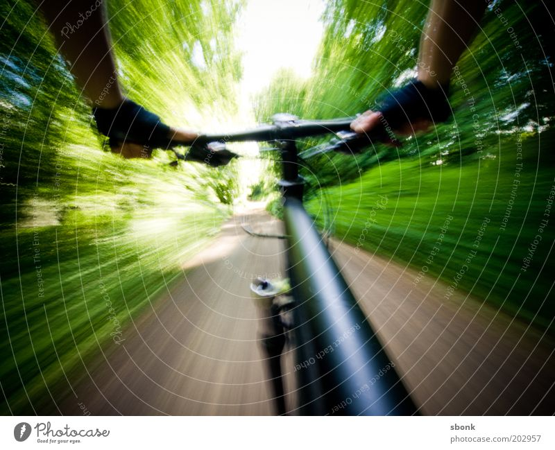 shaky freeride Leisure and hobbies Cycling tour Sports Nature Forest Lanes & trails Gloves Driving Mountain bike Athletic Summer Colour photo Exterior shot Day