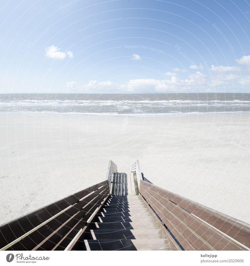 Stairway to heaven Lifestyle Environment Nature Landscape Air Water Sky Cloudless sky Clouds Horizon Beautiful weather Waves Coast Beach North Sea Ocean