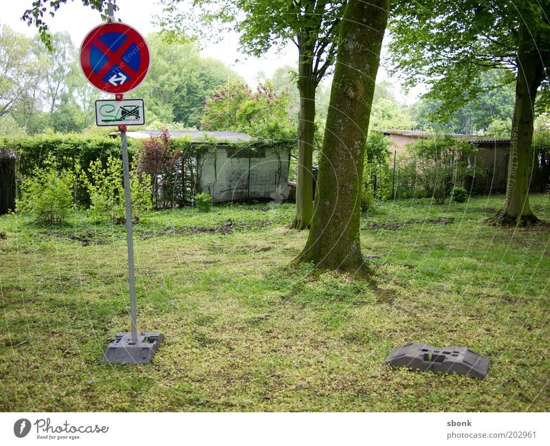 who cares Tree Park Car Clearway No standing Signs and labeling Clue Signage Absurdity Colour photo Exterior shot garden colony Garden Lawn