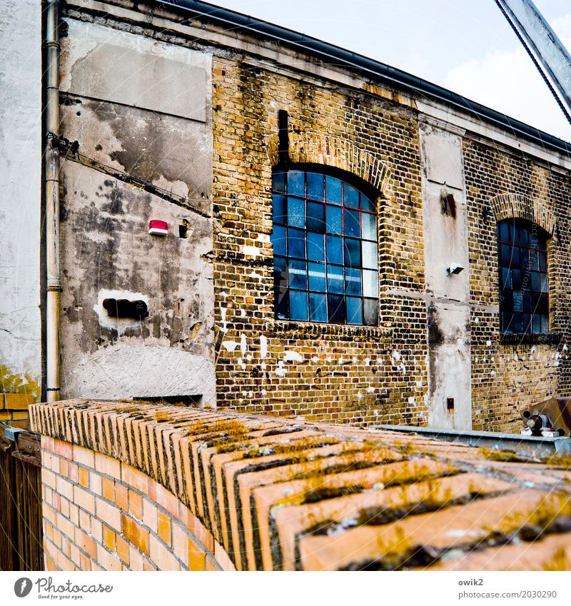 clinker Factory Manmade structures Building Wall (barrier) Wall (building) Facade Window Old Historic Past Transience Dignity Brick facade Brick wall