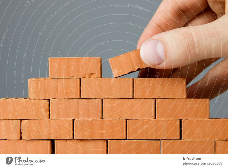 Wall construction I Work and employment Craftsperson Construction site Craft (trade) Man Adults Fingers 30 - 45 years Stone Brick Build Wall (building)