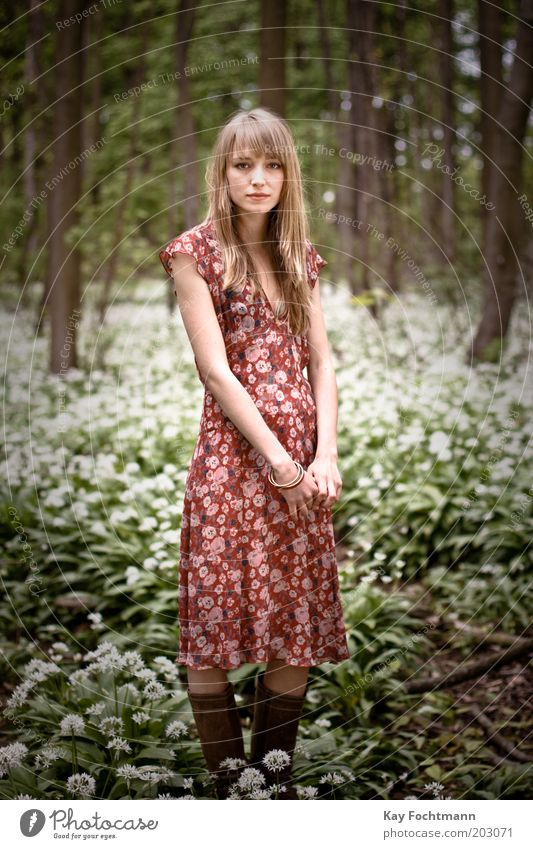 Human being Nature Youth (Young adults) Beautiful Tree Plant Calm Forest Life Relaxation Feminine Style Spring Contentment Blonde