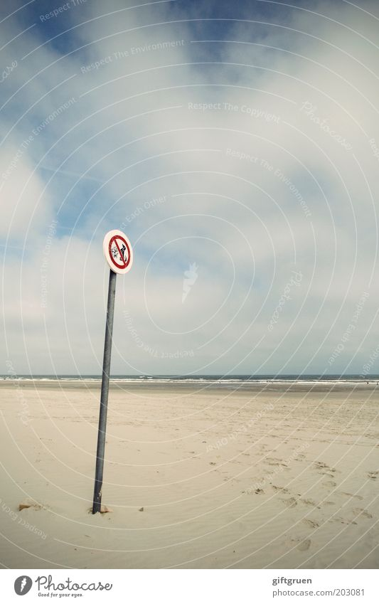 forbidden Summer Environment Nature Landscape Sky Clouds Horizon Coast Beach North Sea Langeoog Road sign Dog Pair of animals Arrangement Bans Prohibition sign
