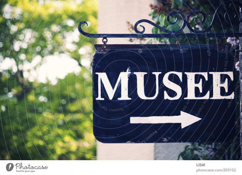 musée Exhibition Museum Tree Green Black White Signs and labeling Entrance Arrow Road marking Groundbreaking Trend-setting Direction Letters (alphabet)