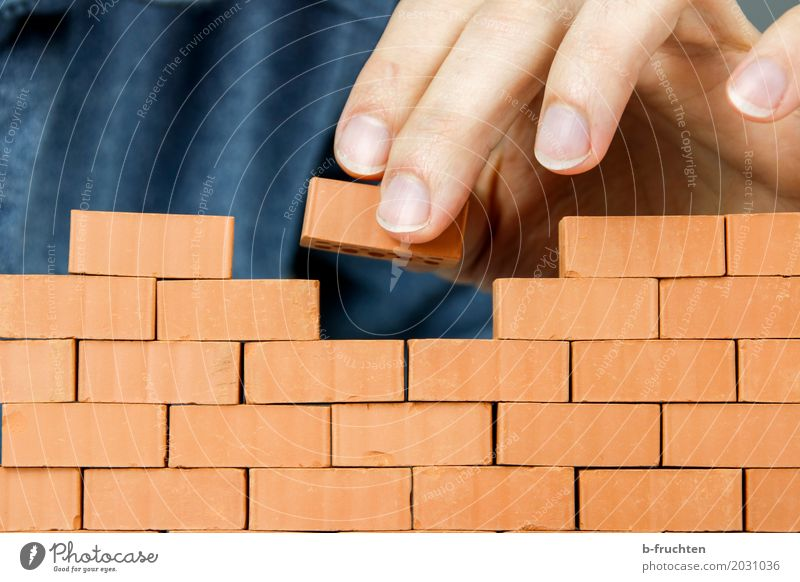 brick wall Model-making House (Residential Structure) Dream house House building Work and employment Craftsperson Craft (trade) Construction site Man Adults
