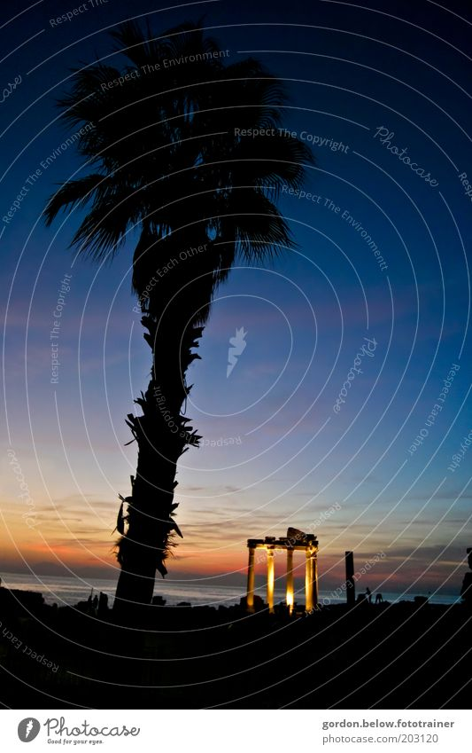 Sky Ocean Blue Summer Black Far-off places Architecture Tourism Historic Palm tree Exotic Dusk Tourist Attraction Vacation & Travel Capital of a pillar
