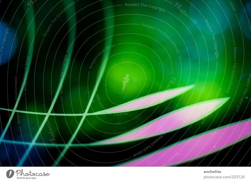 reflection Art Ornament Line Net Esthetic Sharp-edged Blue Multicoloured Green Pink Black Colour Abstract Curved Structures and shapes Reflection Fantasy