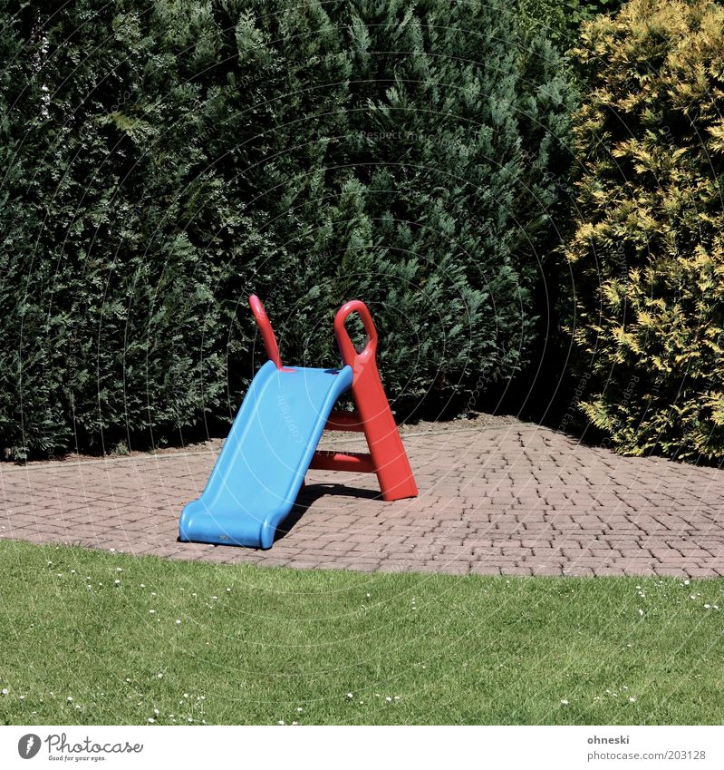 slide tour Leisure and hobbies Toys Slide Infancy Cypress Hedge Garden Colour photo Exterior shot Sunlight Empty Lawn Playground Day