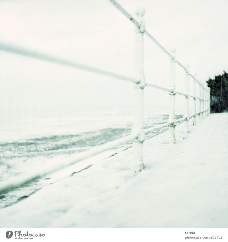 Ocean Winter Beach Far-off places Cold Snow Lanes & trails Landscape Ice Bright Waves Coast Wind Safety Frost Frozen