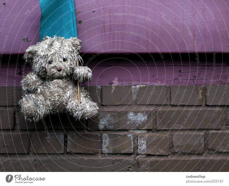 mascot Wall (barrier) Wall (building) Toys Teddy bear Cuddly toy Flag Dirty Gloomy Serene Unwavering Sadness Grief Disappointment Loneliness Exhaustion Brick