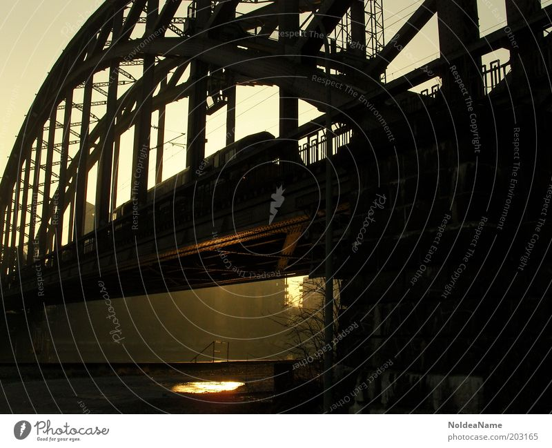 reflection City trip Bridge Rail transport Railroad Vacation & Travel Gold Black Frankfurt Silhouette Main Colour photo Exterior shot Twilight Contrast