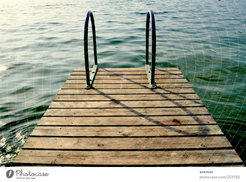 Late cooling Vacation & Travel Summer Summer vacation Swimming pool Water Beautiful weather Lakeside Brown Green Calm Footbridge Jetty Colour photo