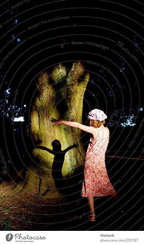 forest fairy 1 Human being Dance Esthetic Elegant Free Natural Beautiful Happy Joie de vivre (Vitality) Romance Movement Ease Calm Chestnut Tree trunk Shadow