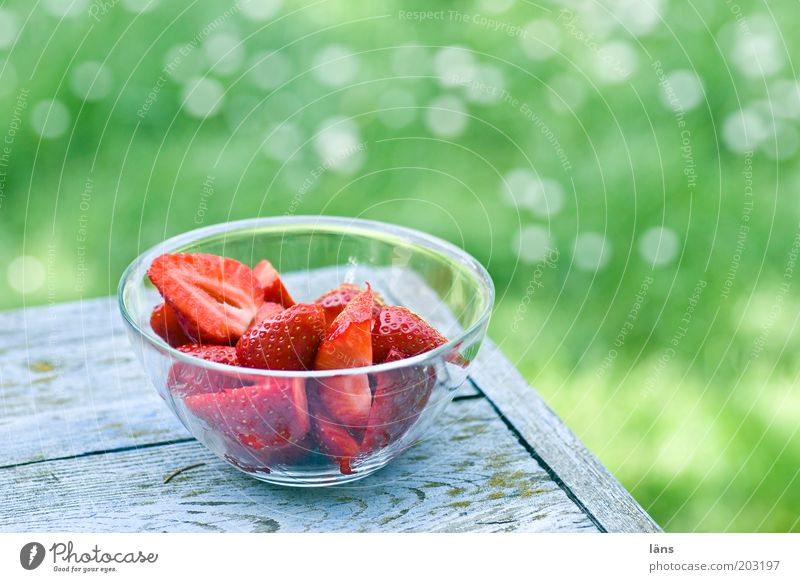 Green Red Summer Nutrition Meadow Healthy Food Fruit Fresh Break Authentic Delicious Vitamin Bowl Strawberry Varnish