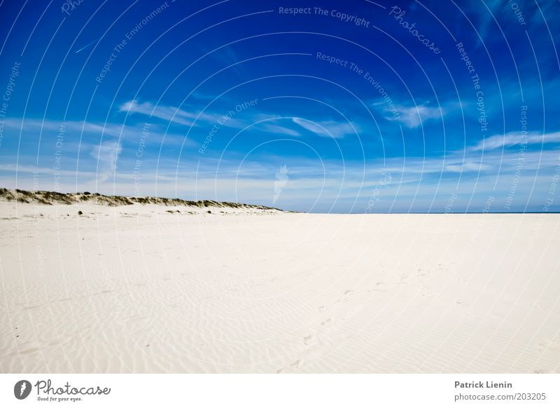 Spiekeroog in summer Nature Landscape Sky Sky only Clouds Summer Beautiful weather Wind Hill Coast Beach North Sea Island Discover Sand Blue Freedom