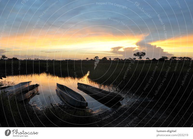 Pure Romanticism Sunrise Sunset Romance mokoro Okavango Watercraft Primordial Exotic Virgin forest Colour photo Exterior shot Deserted Evening Mouth of a river