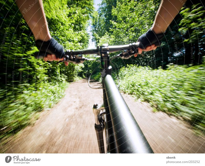 Only connoisseurs ride bicycles Leisure and hobbies Sports Cycling Bicycle Human being 1 Nature Forest Lanes & trails Speed Mountain bike Freestyle Colour photo