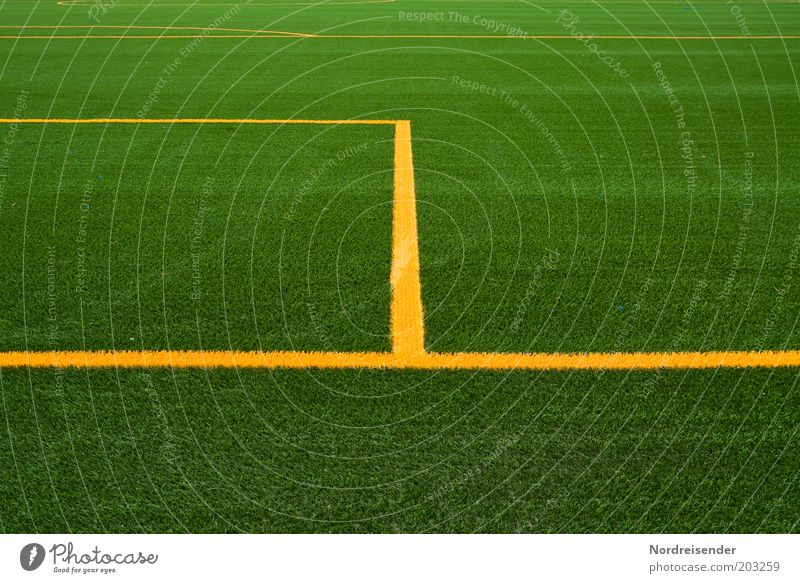 Friday Sports Ball sports Sporting Complex Football pitch Stadium Summer New Emotions Target Penalty area Lawn Artificial lawn Line Marker line Grass surface