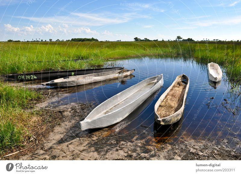 silent Far-off places Beautiful weather River bank Romance Wanderlust Exotic Freedom Africa Namibia Okavango Watercraft mokoro Botswana Colour photo