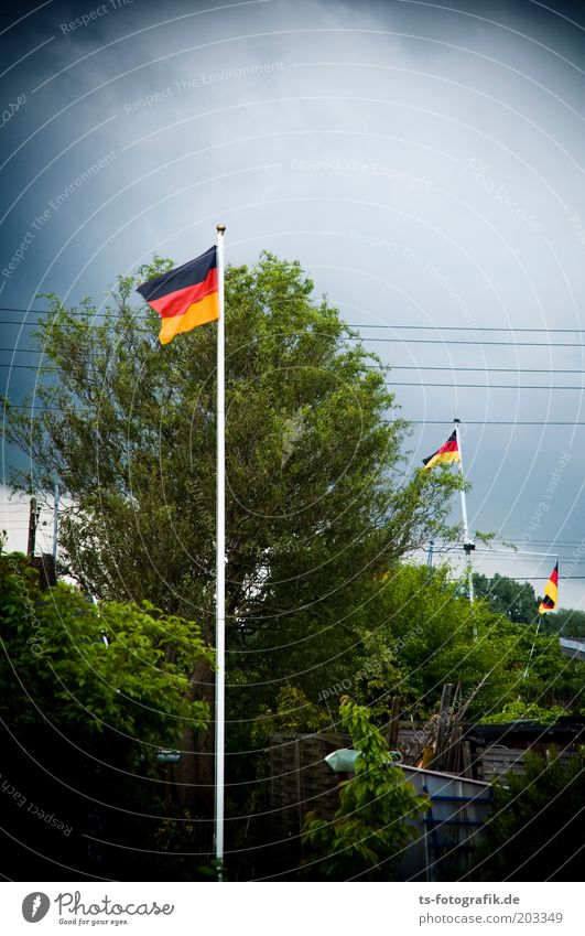 Red Black Movement Garden Germany Gold Flag Sign German Flag Thunder and lightning Pride Politics and state Blow Flagpole World Cup Bad weather
