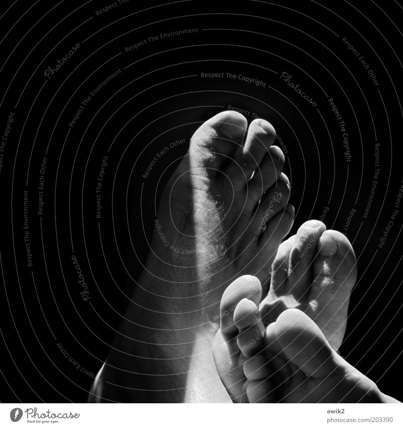 leaning Skin Feet Barefoot Tip of the toe Toenail Great Uncle Touch Relaxation To enjoy Lie Together Emotions Contentment Trust Agreed Sympathy Relationship