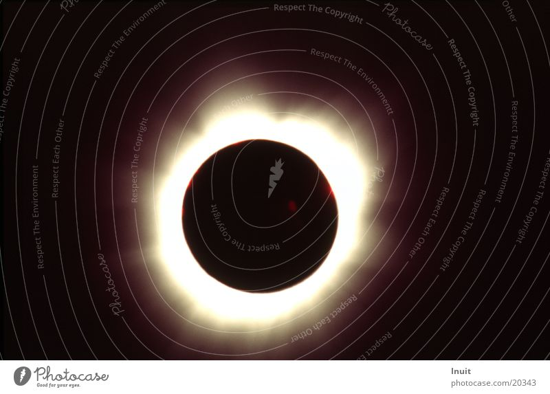 Sun Stars Star (Symbol) Science & Research Moon Astronomy Solar eclipse