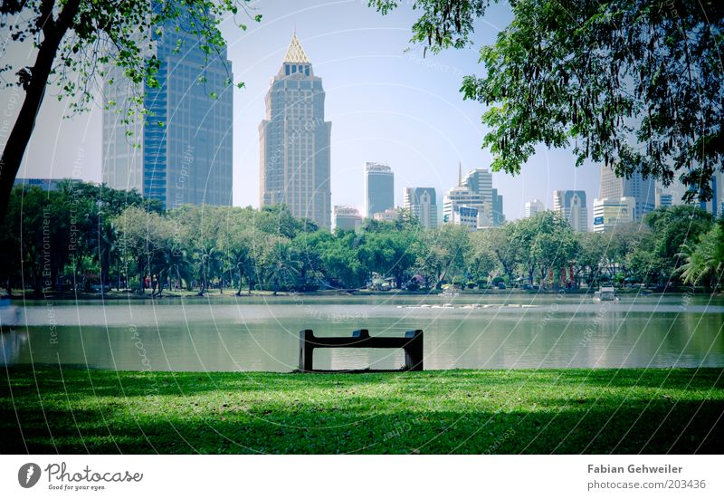 Nature Water City Calm Park Architecture Environment Large High-rise Growth Bench Bank building Change Leisure and hobbies