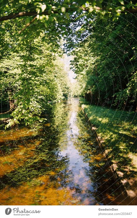 analog sky passage Environment Nature Landscape Plant Earth Water Climate Weather Beautiful weather Brook Emotions Moody Colour photo Multicoloured