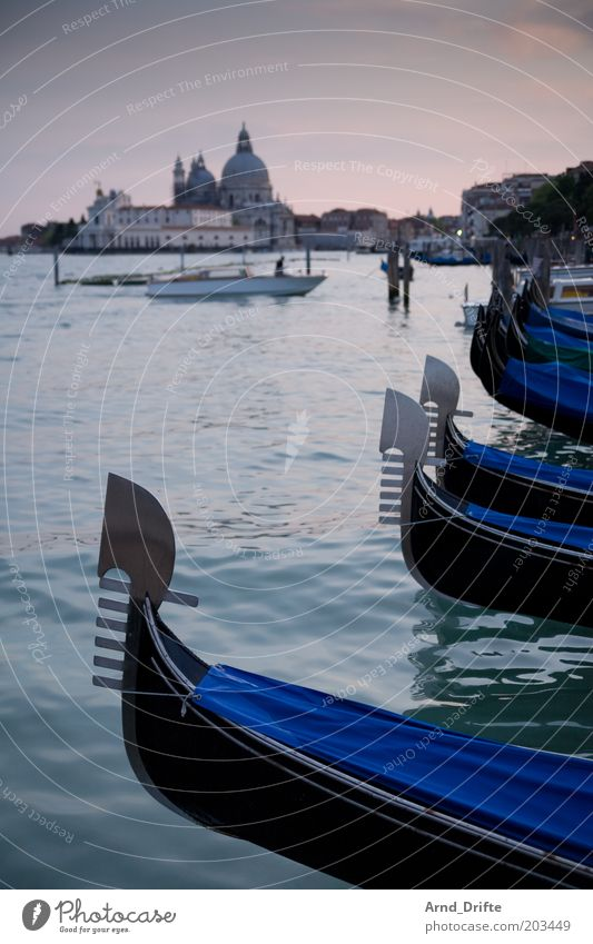 Gondolas in Venice Life Relaxation Leisure and hobbies Trip Far-off places Weather Building Boating trip Ferry Watercraft Famousness Moody Wanderlust Gondolier
