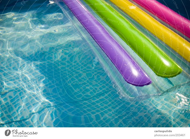 Pool (game) Summer Summer vacation Sun Swimming & Bathing To enjoy Tourism Swimming pool Water Health Spa Blue Colour photo Exterior shot Deserted Day Sunlight