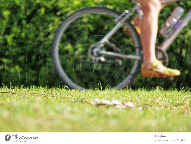 Human being Man Nature Plant Summer Adults Meadow Grass Legs Feet Park Bicycle Trip Driving Cycling Vacation & Travel