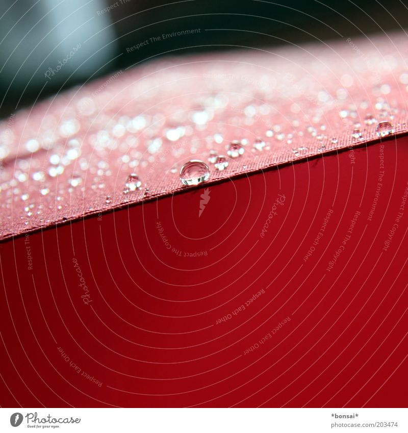 Nature Water Red Spring Line Rain Glittering Weather Fresh Drops of water Wet Protection Safety Cloth Thin
