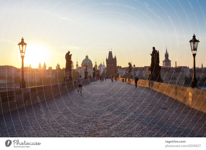 PRAGUE CHARLES BRIDGE Prague Charles Bridge Sunrise Twilight Blue Vacation & Travel Travel photography Czech Republic Night Town Europe City trip Card Sunbeam