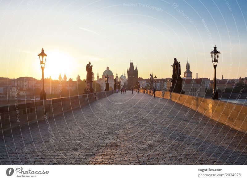 KARLSBRÜCKE - PRAGUE Prague Charles Bridge Sunrise Twilight Blue Vacation & Travel Travel photography Czech Republic Night Town Europe City trip Card Sunbeam