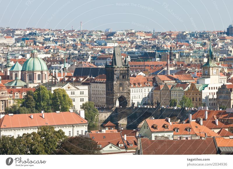 Prague The Moldau Blue Vacation & Travel Travel photography Charles Bridge Czech Republic Lighting Town Europe City trip Card Sunbeam sunny City life